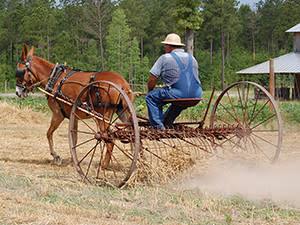 LW Paul Living History Farm