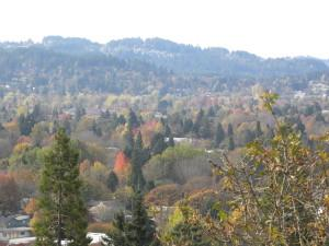Eugene from Skinner Butte