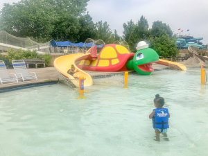 Family Fun - Schlitterbahn Kansas City Waterpark