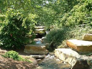 Cox Arboretum in dayton