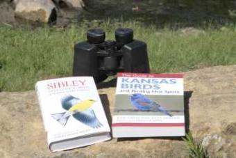 Birding Gear 101