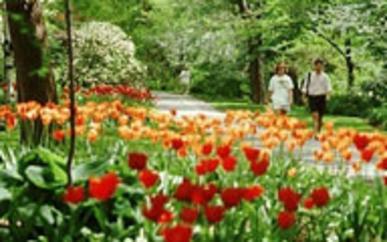 W.J. Beal Botanical Gardens