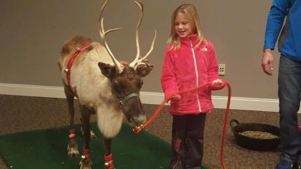 Reindeer Training at Clearview Mall