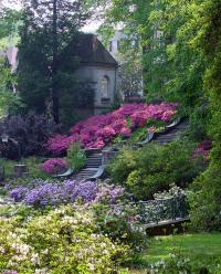 Winterthur Mansion and Gardens