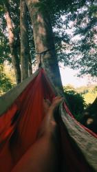hammock oconee river greenway