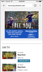 2017 Summer Marketing Campaign - Online - Diynetwork.com - Blue Mountain Resort