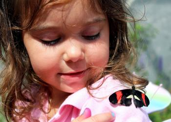 Butterfly on girl's shoulder