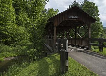 Thomas Kelly Covered Bridge - Allegany State Park