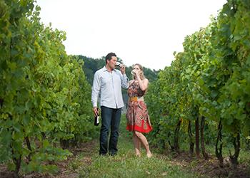 Arrowhead Spring Vineyards - Photo provided by Arrowhead Spring