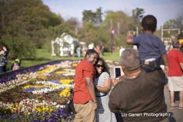 Lilac Festival in the Garden