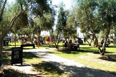 Queen Creek Olive Mill's Olivepalooza