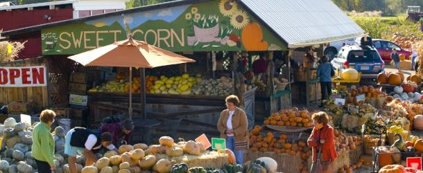 Munson Farm Stand selling fall produce