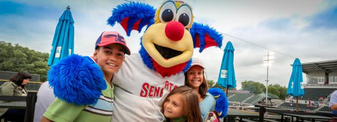 Harrisburg Senators Baseball