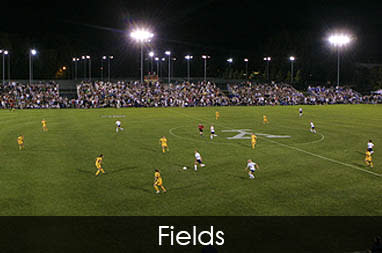 Sports fields in Utah Valley