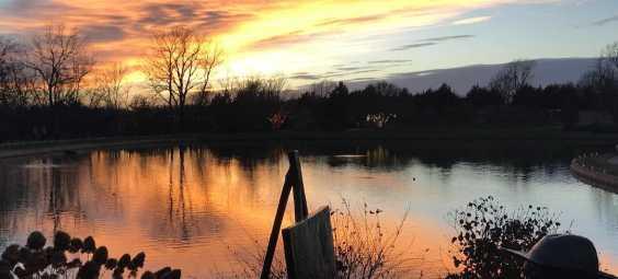 OP Arboretum Sunset