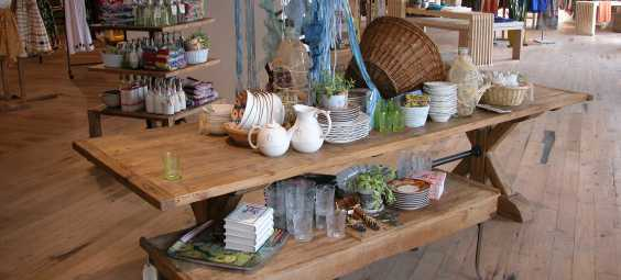 Anthropologie 2
