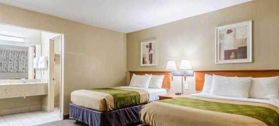 Econo Double Beds