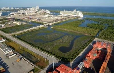 Aerial image of the port's two upland enhancement areas that include more than 70,000 new mangroves and native water plants.