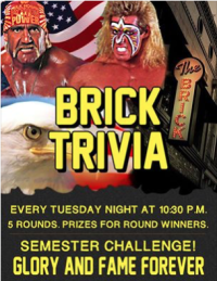 The Brick Trivia