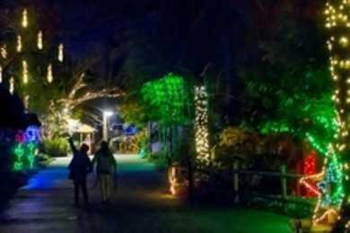 lights before christmas - Riverbanks Zoo Lights Before Christmas