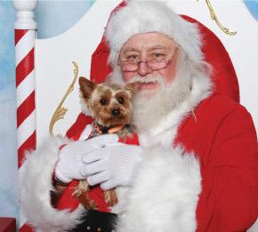 Pet-Photos with Santa