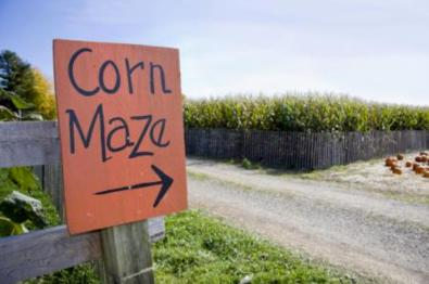 Steed's Dairy Maze Sign