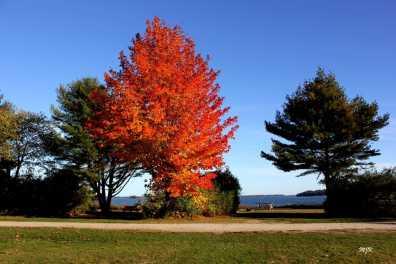 Winslow Park in Autumn