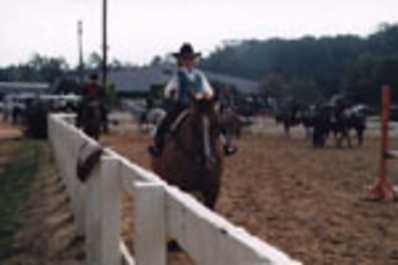 Hunt Horse Complex