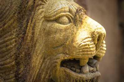 Lafayette Lion