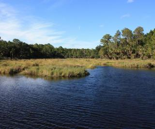 Bulow Creek State Park