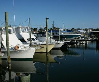Adventure Yacht Harbor Inc.