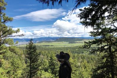Thompson River Valley view