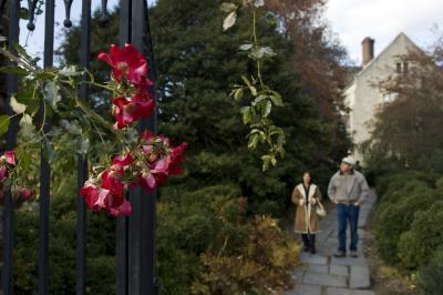 Planting Fields Arboretum & Coe Hall Mansion State Historic Park 338