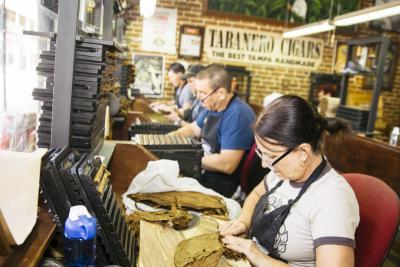 Authentic Cuban Cigar Rollers in Ybor City