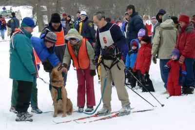 dog sledding at Mendon Ponds Winterfest