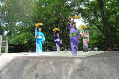 spring festival botanic garden