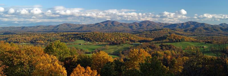 Fall Foliage - James Beeler