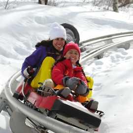 Activities Alpine Coaster