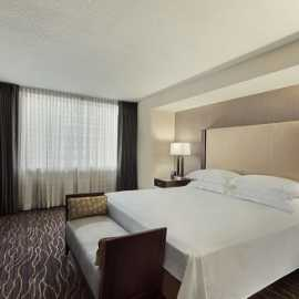 Deluxe Suite Bed Area