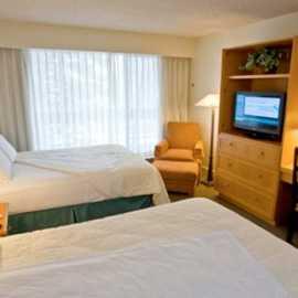 One Bedroom Condo with Loft