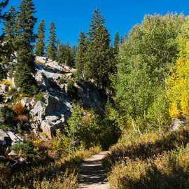 Fall colors along the Lake Mary Trail, photo by Kyle Jenkins