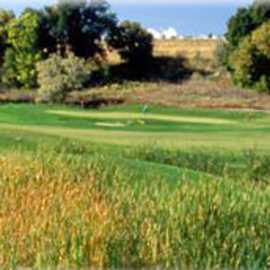 Mulligan's South Golf Course