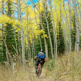 Dropping back into the aspens, photo by Brant Hansen