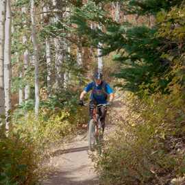 Climbing through pine and aspen, photo by Brant Hansen