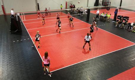 Diggz Volleyball court players
