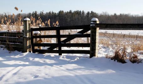 Indiana Dunes National Lakeshore Chellberg Farm Winter