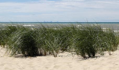 Porter Beach 2