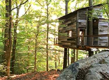 Treetop Hideaways
