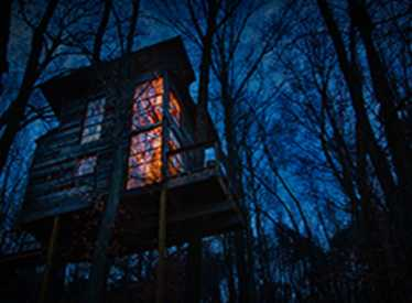 Treetop Hideaways at night