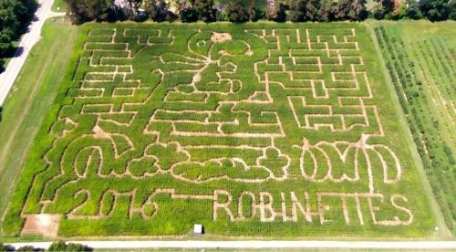 Maze at Robinette's Apple Haus & Winery